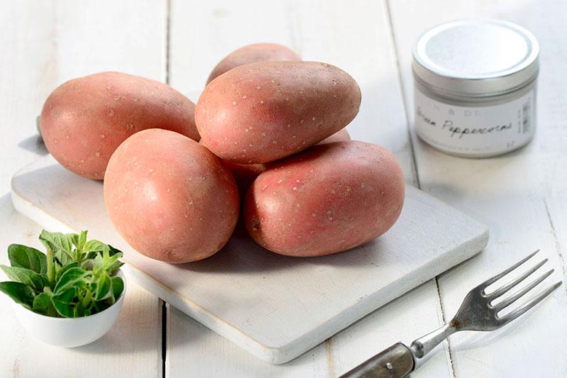 Vertrieb von Kartoffeln